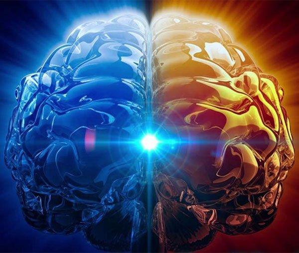 whole brain synchromisation enhances mental ability